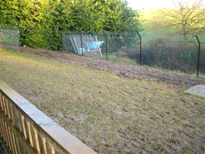Kennels and Dog Runs