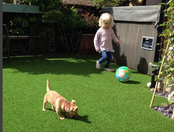 Family Friendly Artificial Grass