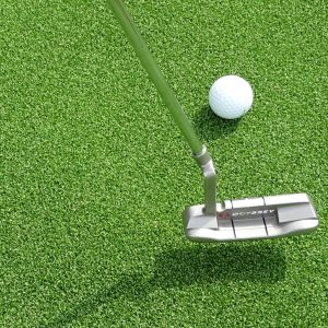 artificial grass putting green shop